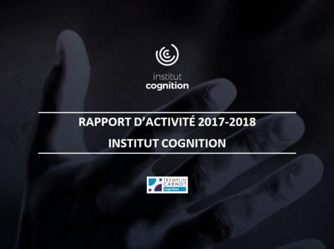 L'Institut Cognition vient d'éditer son rapport d'activité 2017/2018